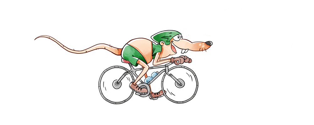 Ratte_Radfahren 2